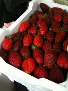 Roadside strawberries, bought between Krak and Homs